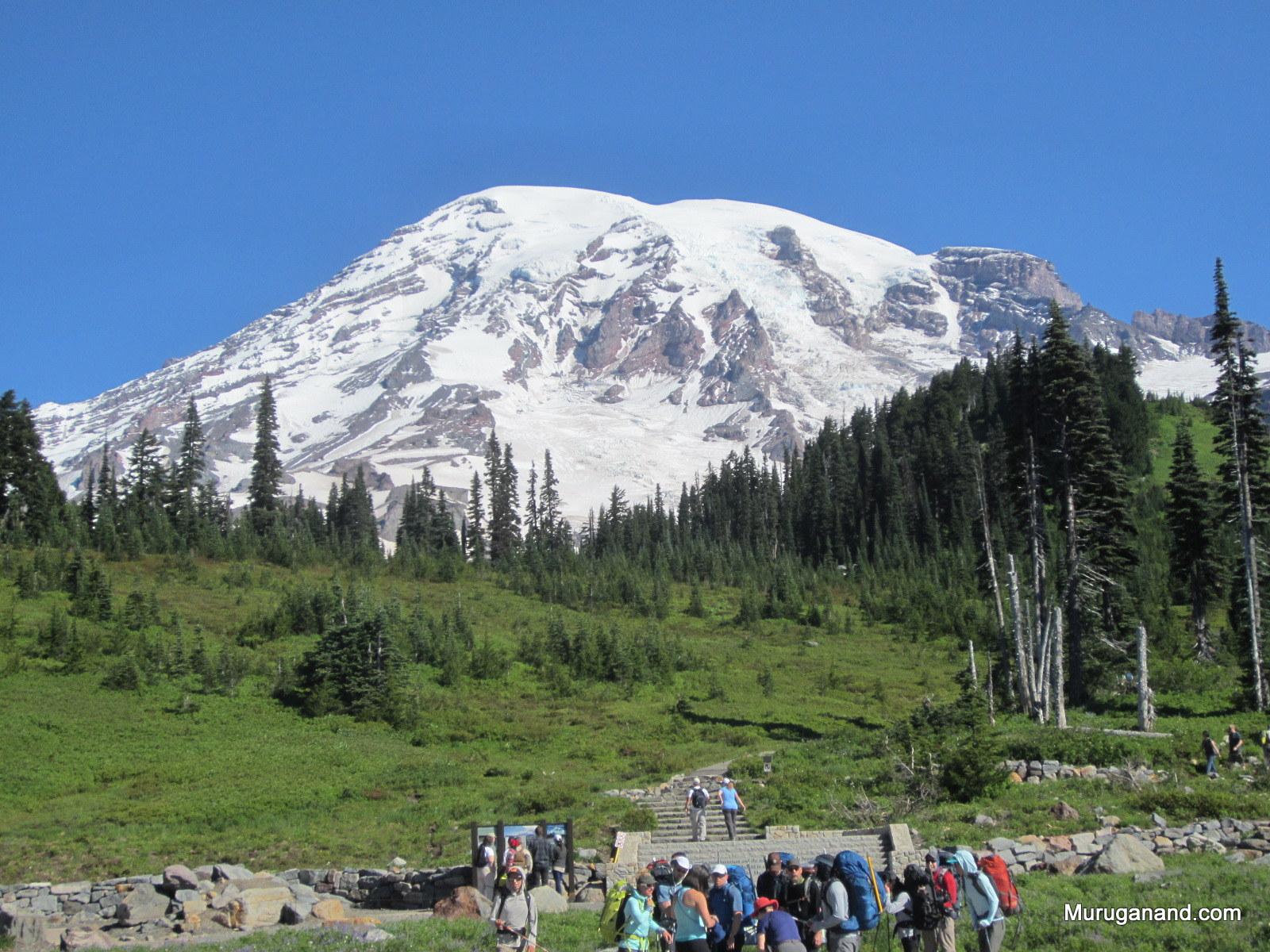 Mt.+Rainier+from+Paradise