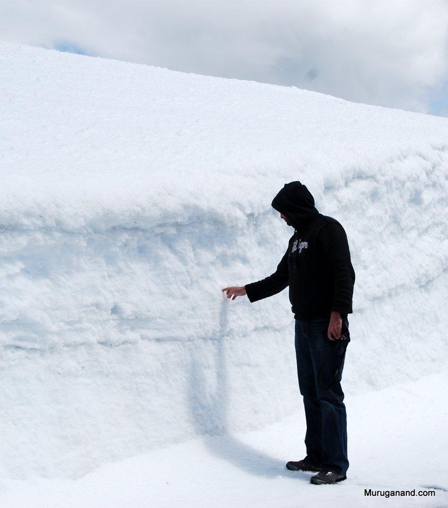 Snow+in+Hurricane+Ridge