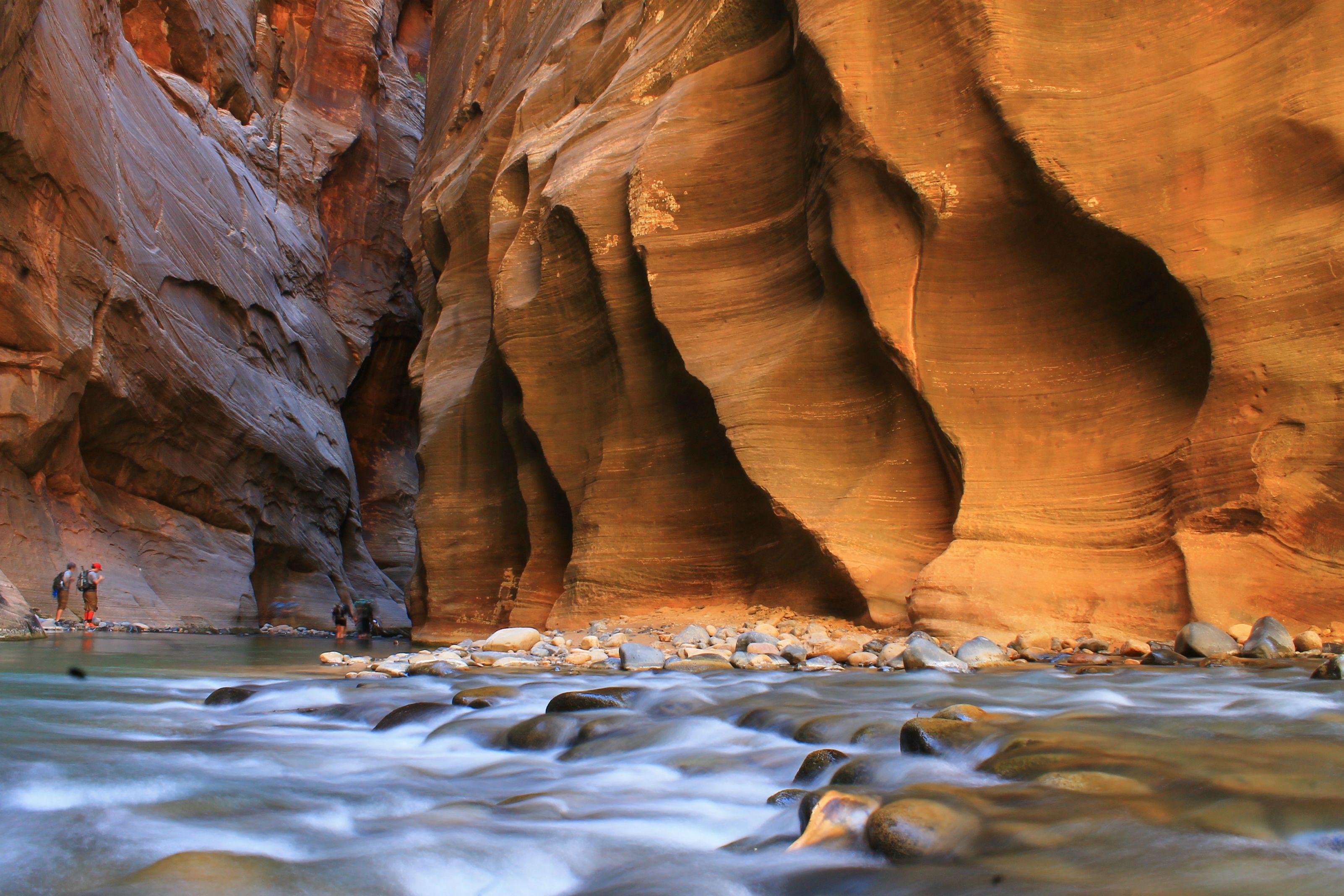 Zion+narrows+canyon