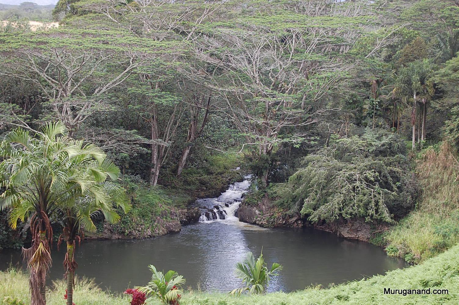 View at Monastery (Kauai)