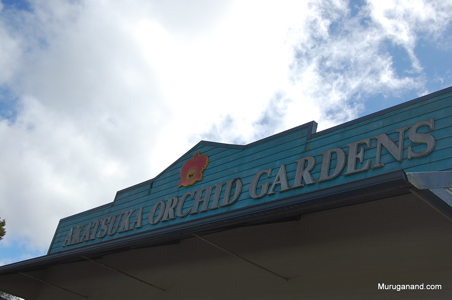Tour Stop at Orchid Gardens (Hilo, Hawai'i)
