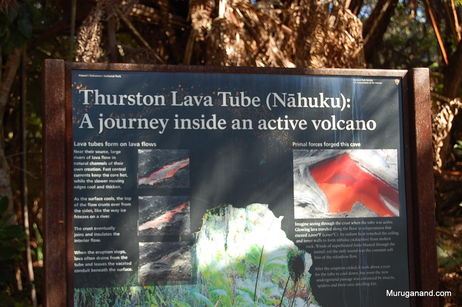Thurston Lava Tube (Hilo, Hawai'i)