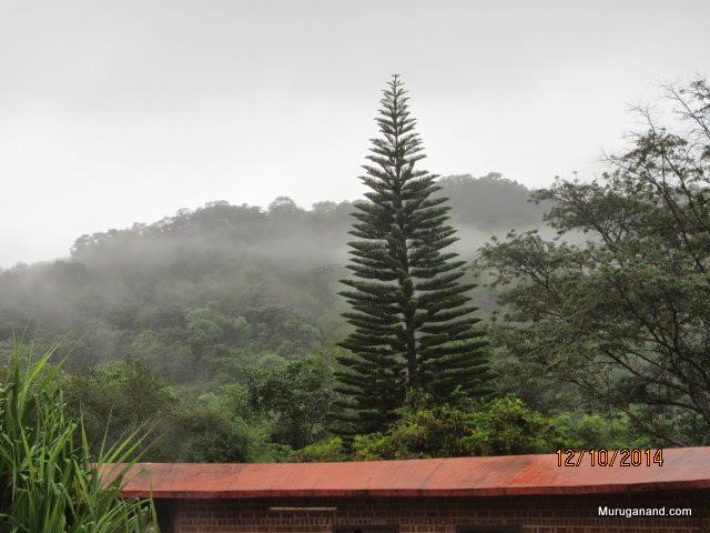 Misty Ghat