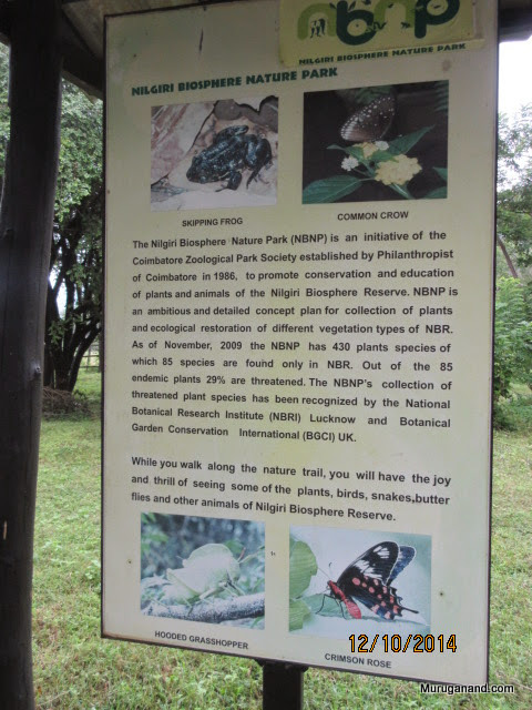 """Park contains 430 plant species; 20 are classified as """"near extinction"""""""