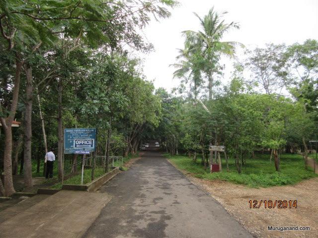 Nearby campus-Swami Dayananda Ashramam- World Headquarters in Anaikatti
