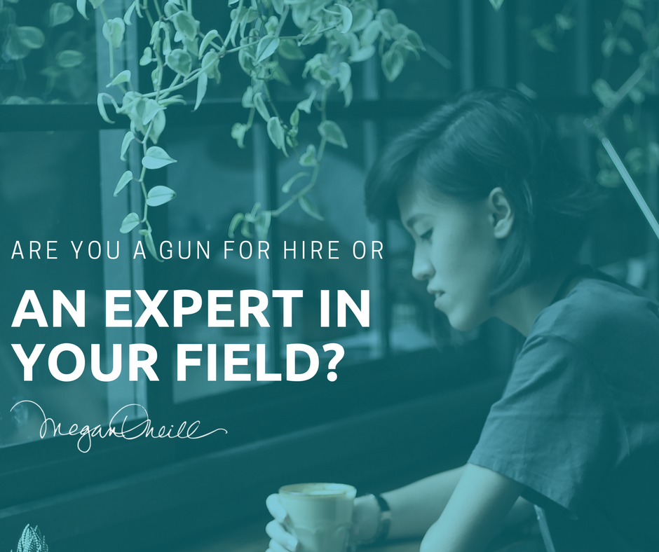 Are you a Gun for Hire or An Expert in your Field?