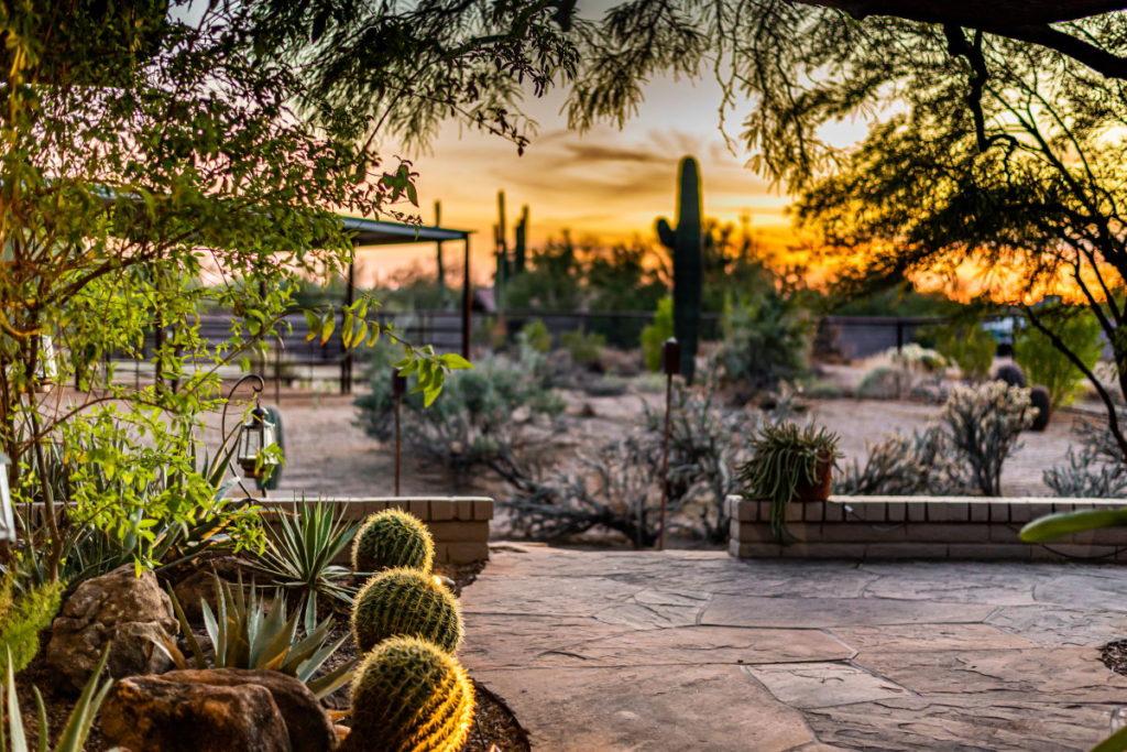 Home Management in Scottsdale, AZ