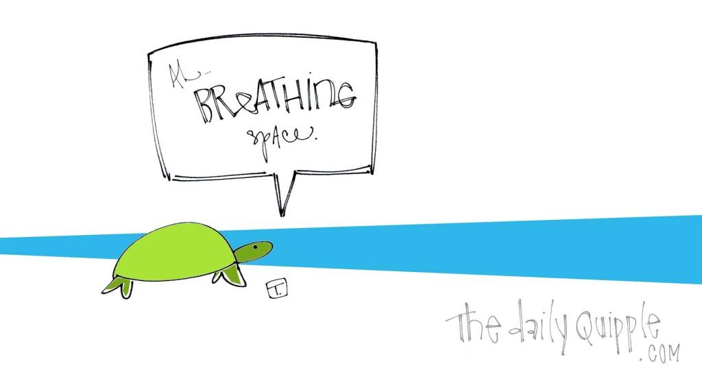Ah...breathing space.
