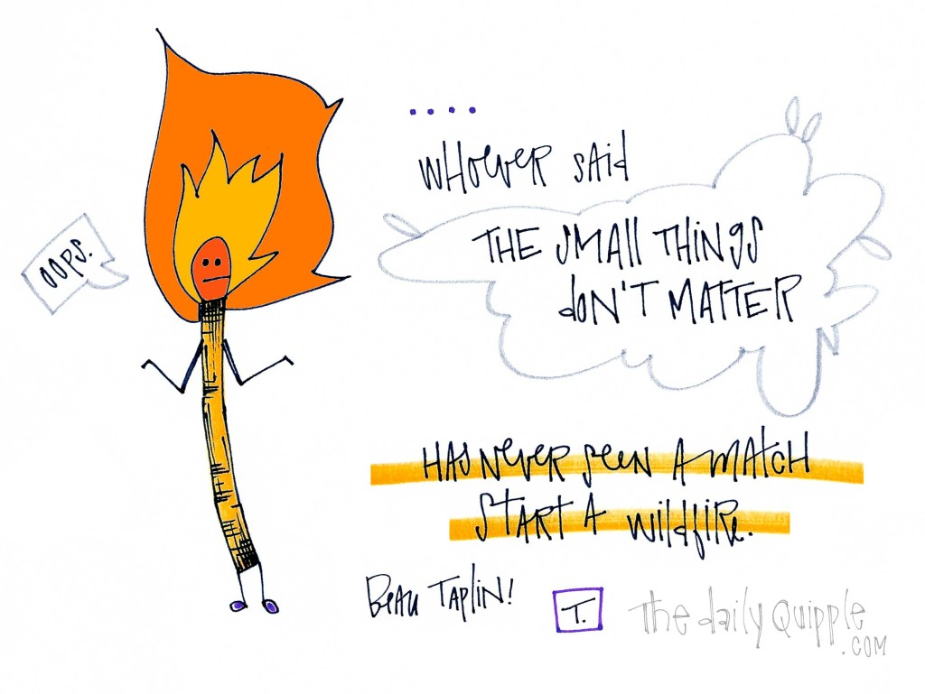 """Whoever said the small things don't matter has never seen a match start a wildfire."" [Beau Taplin]"