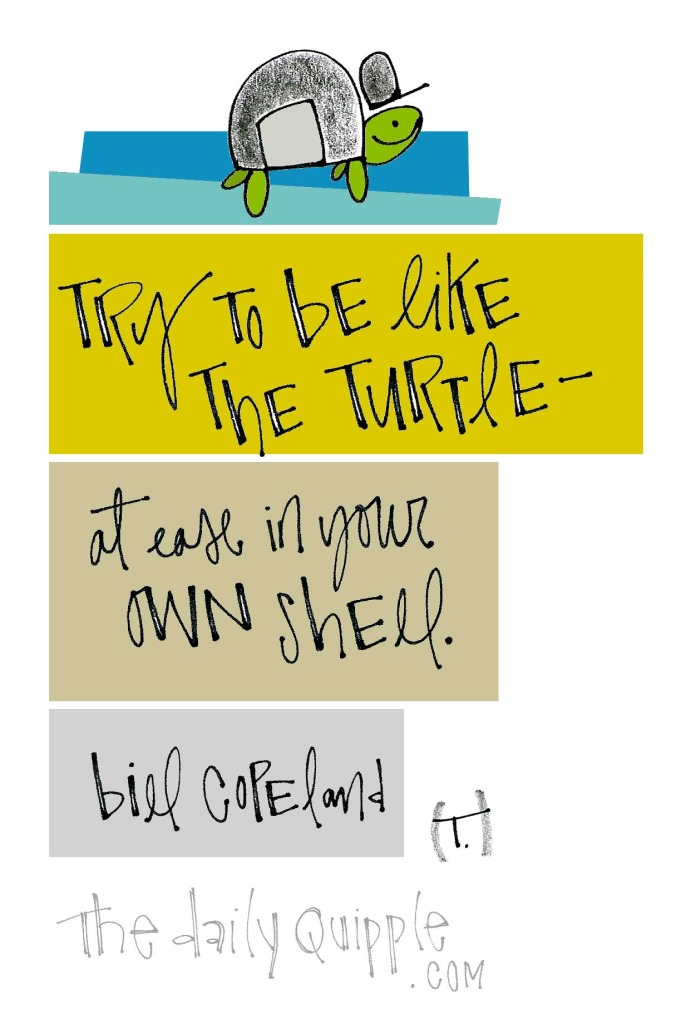 Try to be like the turtle -- at ease in your own shell. [Bill Copeland]