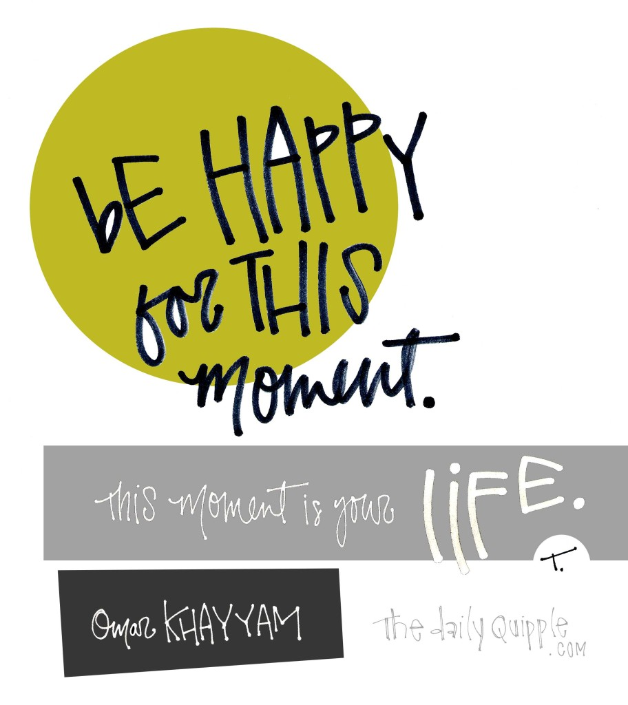 Be happy for this moment. This moment is your life. [Omar Khayyam]
