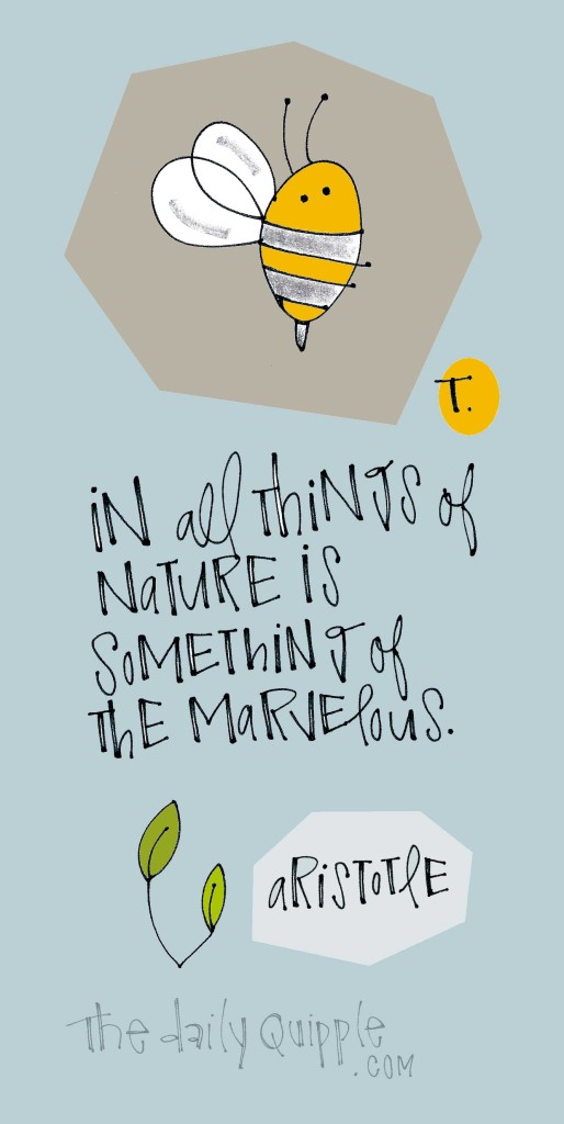 In all things of nature is something of the marvelous. [Aristotle]