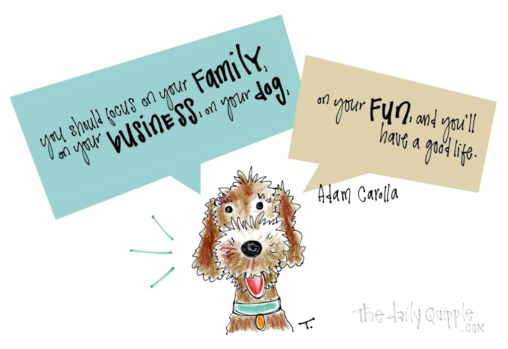 Focus on your family, on your business, on your dog, on your fun, and you'll have a good life. [Adam Carolla]