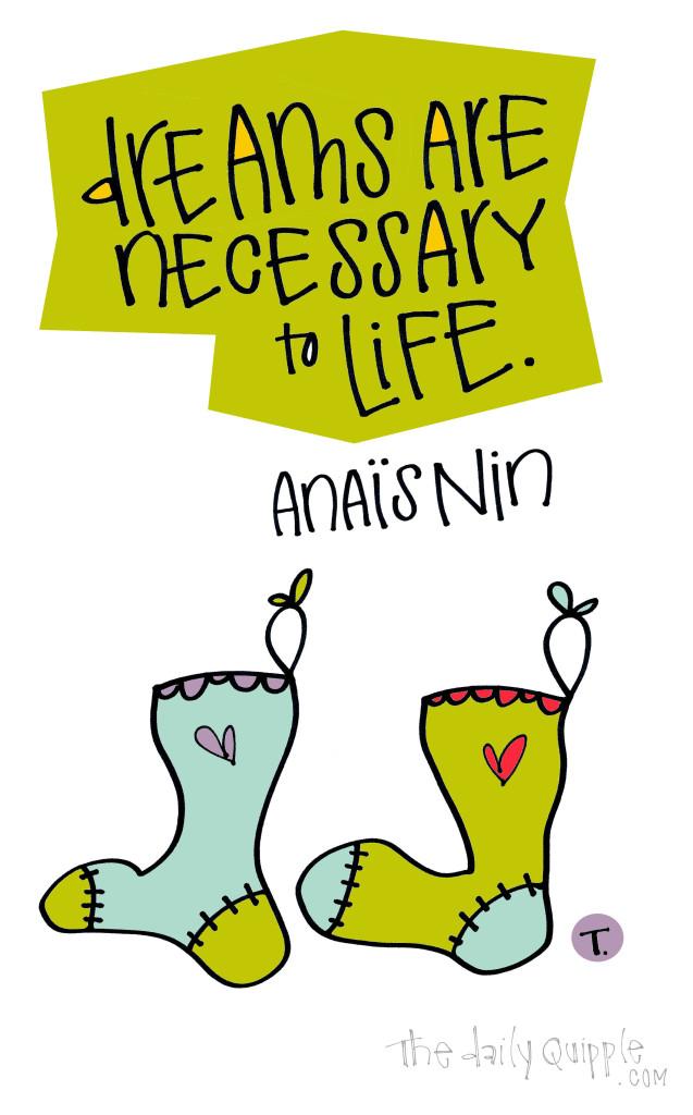 Dreams are necessary to life. [Anais Nin]