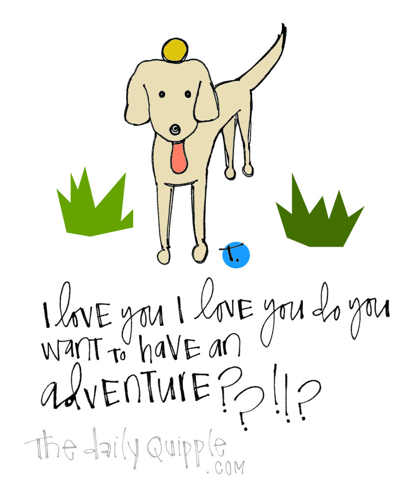 I love you I love you do you want to have an adventure??!!?