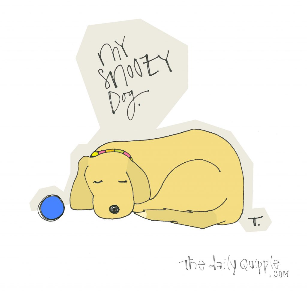illustration of a dog and the words: My snoozy dog.