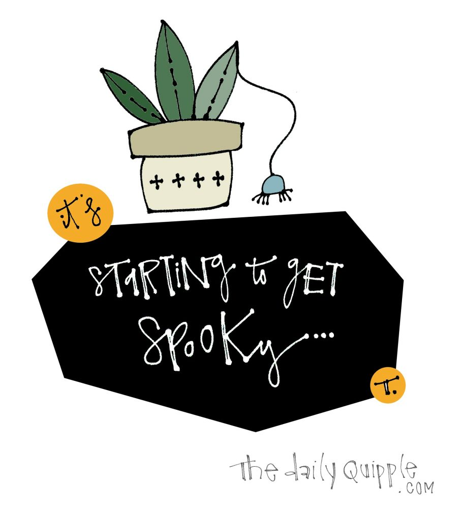 Illustration of a potted plant and a hanging spider with words: It's starting to get spooky...