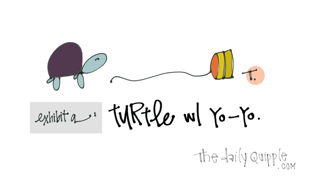 Illustration of a turtle, a yo-yo, and words: Exhibit a: Turtle with a yo-yo.