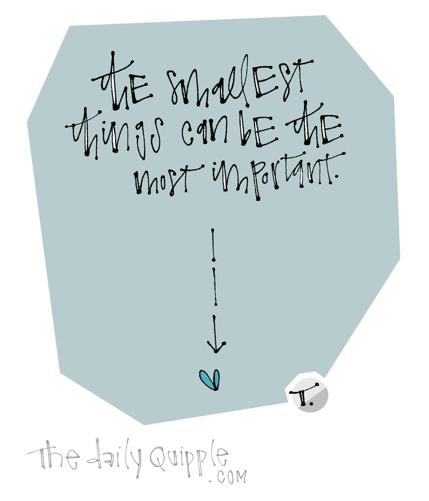Small and Special | The Daily Quipple