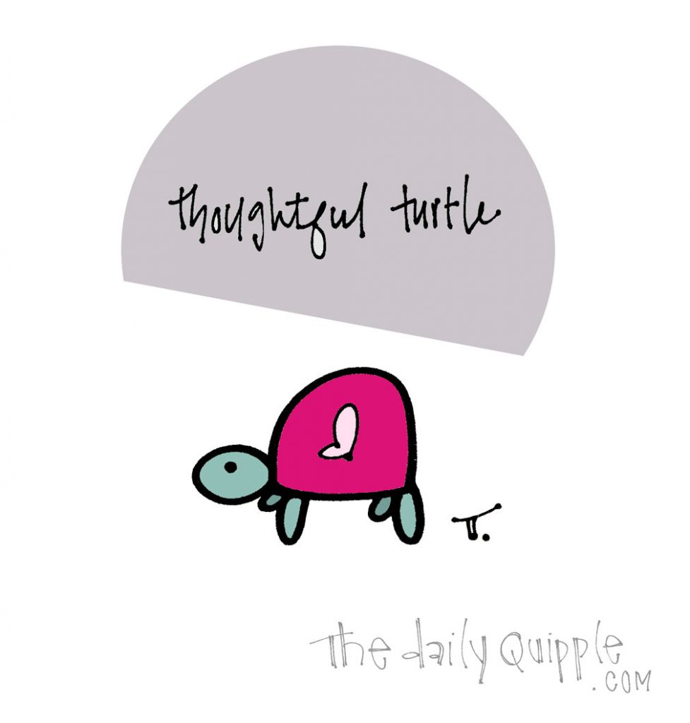 Turtley Thoughtful   The Daily Quipple