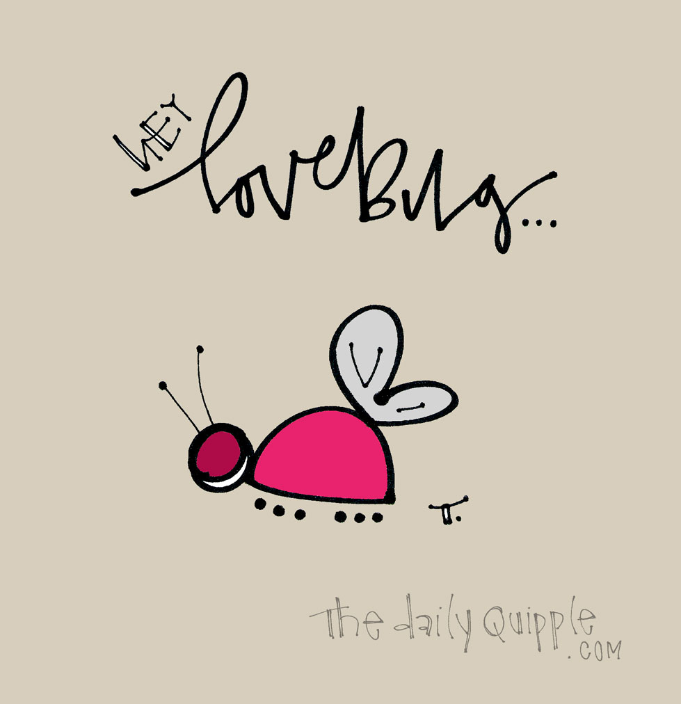 Hey Lovebug! | The Daily Quipple