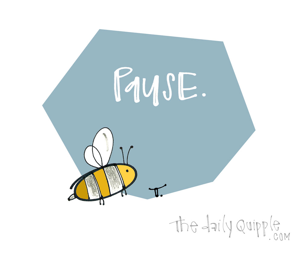Bee Still | The Daily Quipple