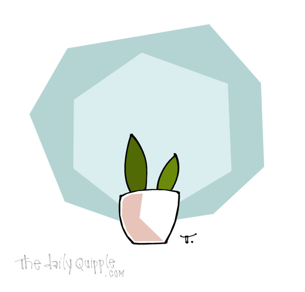Happy Little Plant | The Daily Quipple