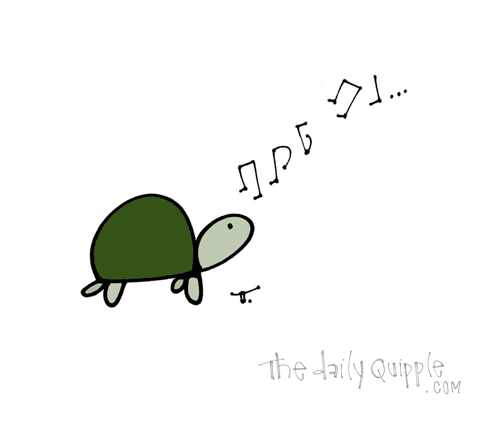 Turtle With A Song | The Daily Quipple