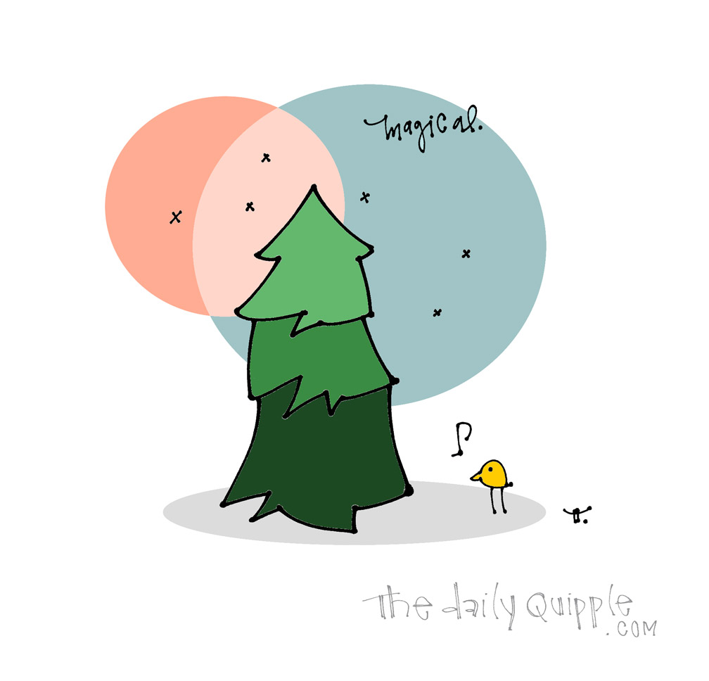 Found My Tree! | The Daily Quipple