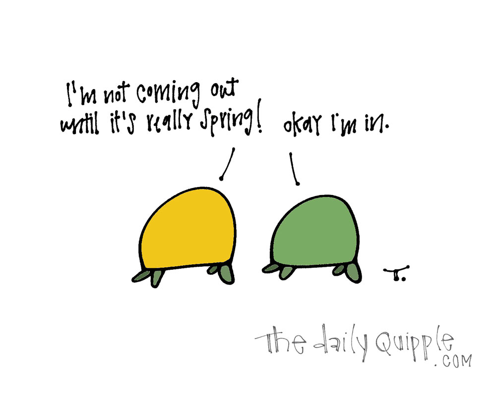 Staying In | The Daily Quipple