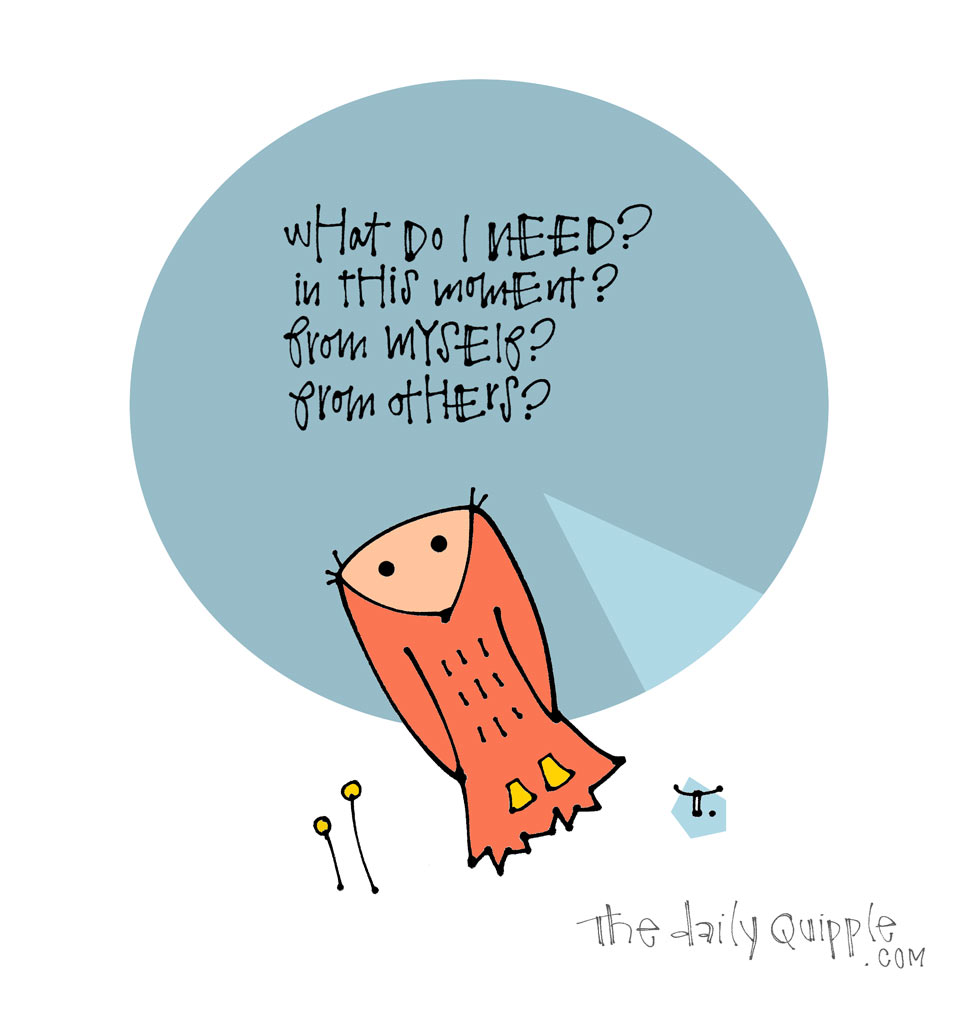 Wise Questions | The Daily Quipple