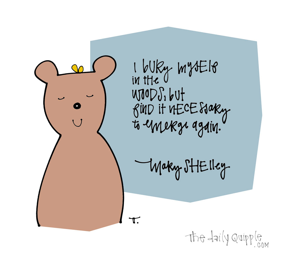 Hide Away Bear | The Daily Quipple