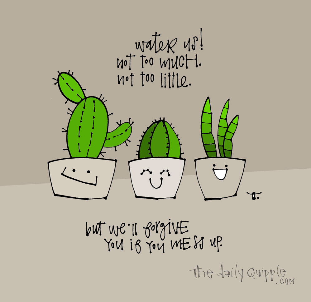 We Don't Succ | The Daily Quipple