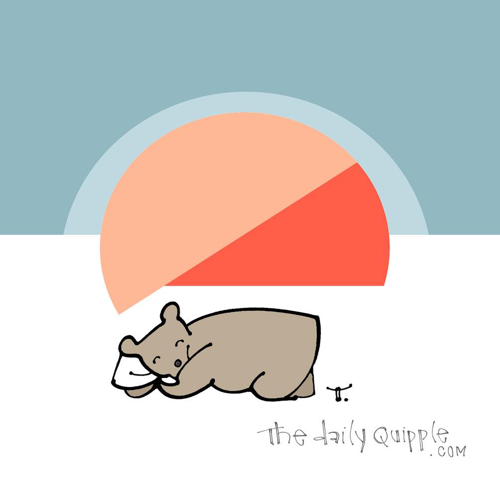 So Beary Sleepy | The Daily Quipple