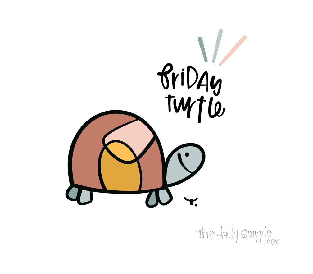 Friday Turtle | The Daily Quipple