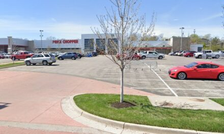 Inspection Roeland Park Price Chopper; flies in 3 departments, deli area hot case food at unsafe temperatures, 7 violations