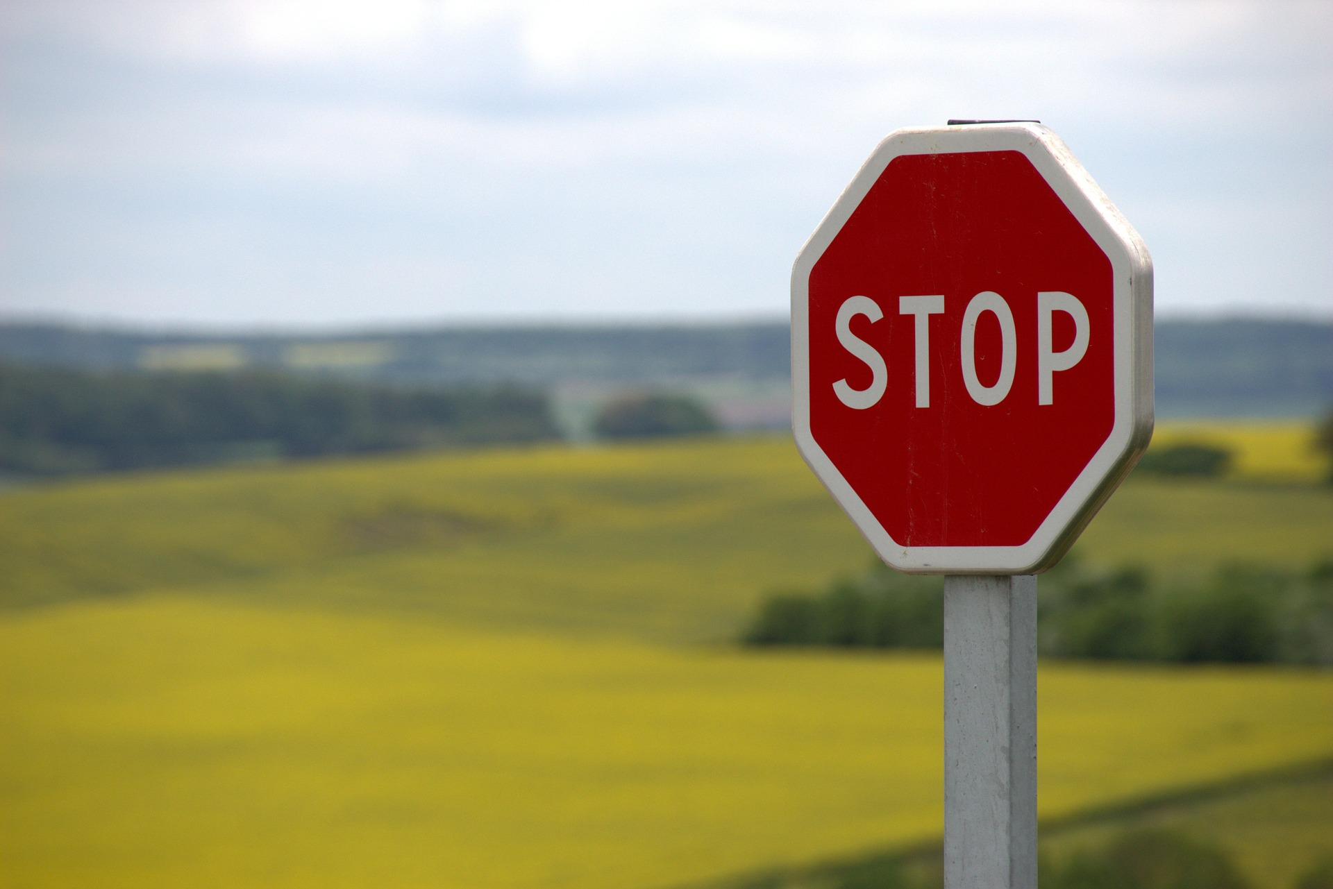 stop sign in a grass field