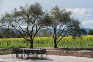TOR Napa Valley's Al Fresco Tasting at Wheeler Farms