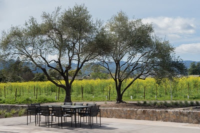 TOR Napa Valley's Al Fresco Tasting at Wheeler Farms