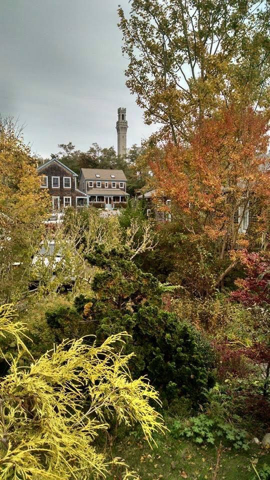 provincetown in autumn
