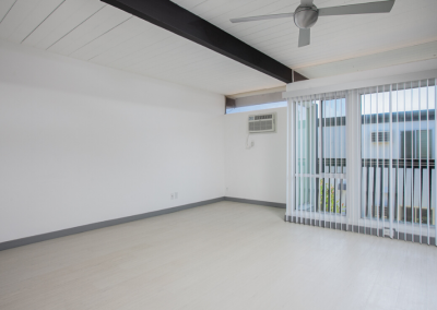 Window Blinds on the spacious apartment