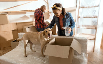 4 Positive Outcomes of Renting With a Pet