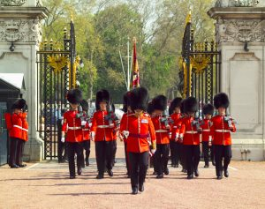 Coldstream Guards marching through the gates of Buckingham Palace during the Changing of the Guard ceremony, Westminster, London, London, England.