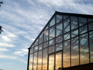 The Glass House at Sunset