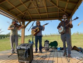Stewedafried Bluegrass Trio [food truck - TBD]