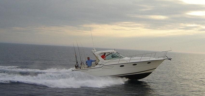 terminator sport fishing charter pentwater michigan