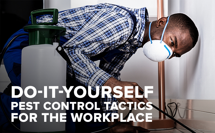 Do-It-Yourself Pest Control Tactics for the Workplace