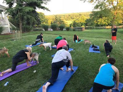 yoga outdoors at wavf