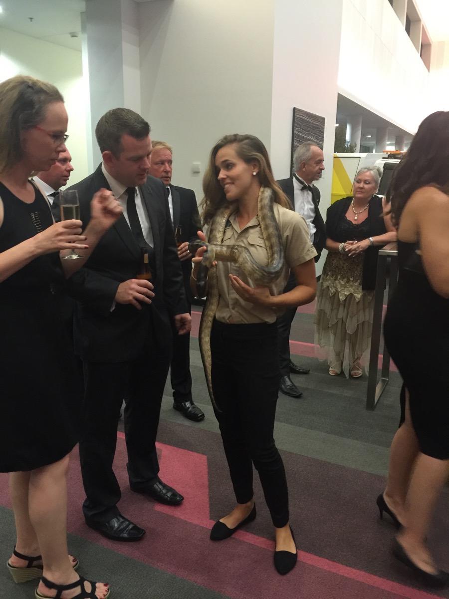 Minnik Chartered Accountants - Australia Zoo - Pre Dinner Drinks with a Snake