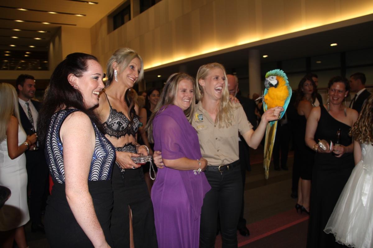 Minnik Chartered Accountants - Australia Zoo - Great Night